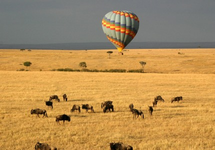 4-Days-Mara-Lodge